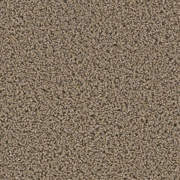 Yellowstone carpet in Caldera