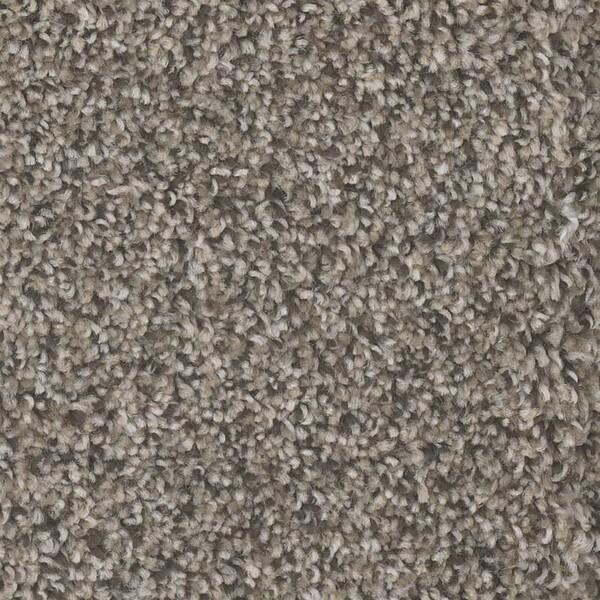 Yosemite carpet in Bark