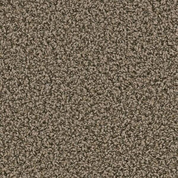 Zion carpet in Springdale